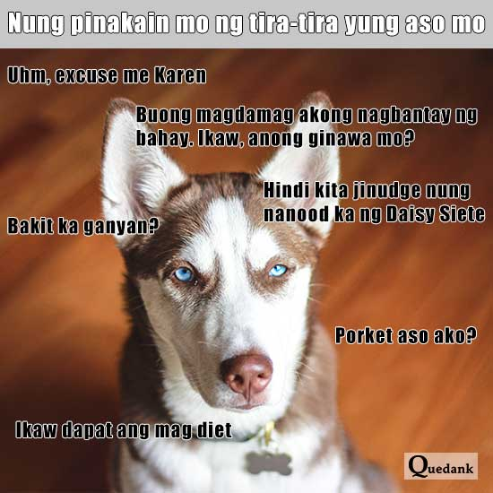 pinoy meme tagalog meme galit na aso