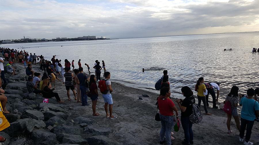 Manila Bay - Rehabilitation Program - Baywalk - Roxas Blvd