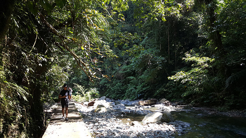 Sights of Aurora: Light Trek to Ditumabo Mother Falls