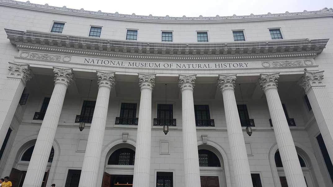 Wander the Halls of the National Museum of Natural History in Manila